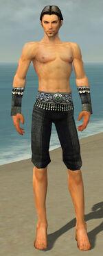 Elementalist Elite Luxon Armor M gray arms legs front