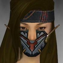 File:Assassin Elite Kurzick Armor F gray head front.jpg