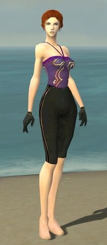 File:Mesmer Norn Armor F gray arms legs front.jpg