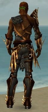 Ranger Elite Sunspear Armor M gray back