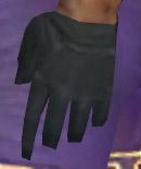 File:Mesmer Elite Enchanter Armor M gloves.jpg