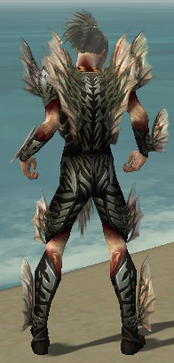File:Necromancer Primeval Armor M gray back1.jpg