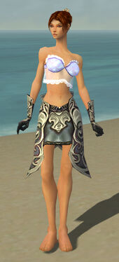 Elementalist Monument Armor F gray arms legs front