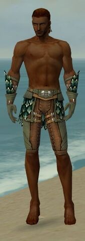 File:Ranger Drakescale Armor M gray arms legs front.jpg
