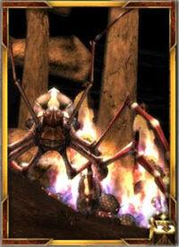 Arachni's Haunt