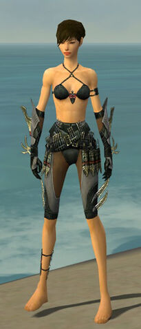File:Assassin Elite Imperial Armor F gray arms legs front.jpg
