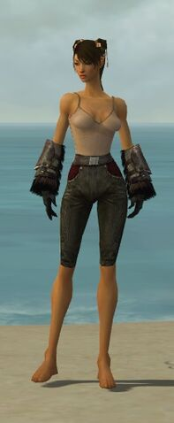 File:Ranger Norn Armor F gray arms legs front.jpg
