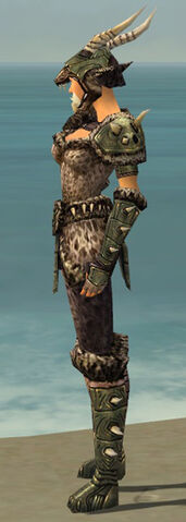 File:Warrior Elite Charr Hide Armor F gray side.jpg