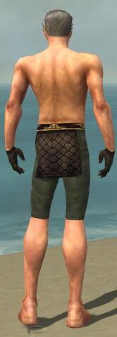 File:Mesmer Vabbian Armor M gray arms legs back.jpg