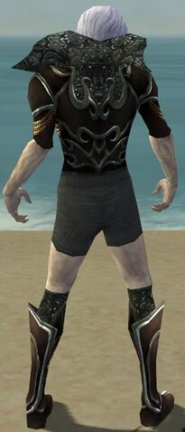 File:Necromancer Vabbian Armor M gray chest feet back.jpg