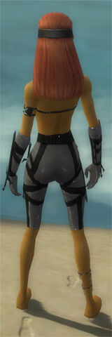 File:Assassin Obsidian Armor F gray arms legs back.jpg