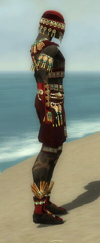 File:Ritualist Elite Luxon Armor M dyed side.jpg