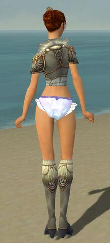 File:Elementalist Norn Armor F gray chest feet back.jpg
