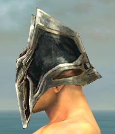 File:Warrior Elite Kurzick Armor M gray head side.jpg
