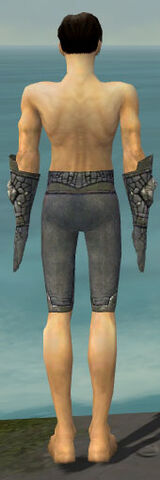 File:Elementalist Stoneforged Armor M gray arms legs back.jpg