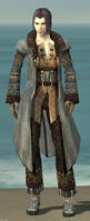 Elementalist Vabbian Armor M gray front