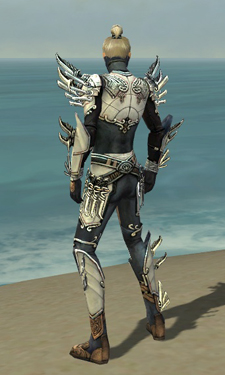 Assassin Asuran Armor M dyed back