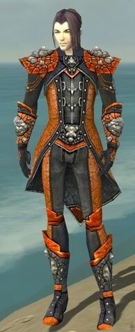 File:Elementalist Elite Stoneforged Armor M dyed front.jpg