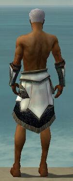 Paragon Obsidian Armor M gray arms legs back