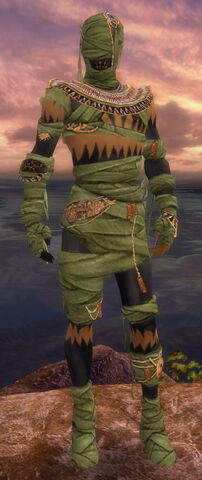 File:Ritualist Ancient Armor M dyed front.jpg