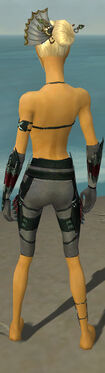 Assassin Seitung Armor F gray arms legs back