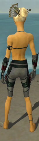 File:Assassin Seitung Armor F gray arms legs back.jpg