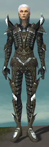 File:Necromancer Profane Armor M gray front.jpg