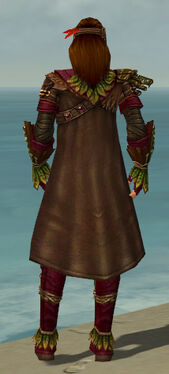 Ranger Druid Armor M dyed back