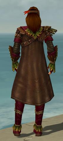 File:Ranger Druid Armor M dyed back.jpg