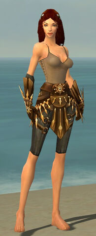File:Ranger Elite Sunspear Armor F gray arms legs front.jpg