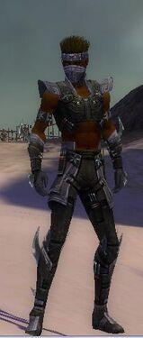 Assassin Luxon Armor M gray front