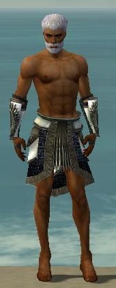 File:Paragon Obsidian Armor M gray arms legs front.jpg