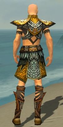 File:Ritualist Deldrimor Armor M dyed back.jpg