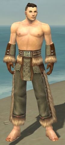 File:Monk Norn Armor M gray arms legs front.jpg