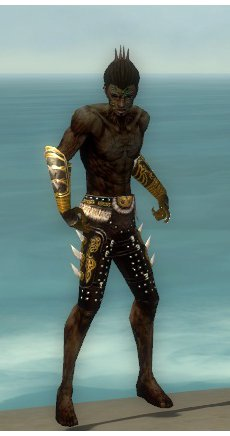 File:Necromancer Norn Armor M gray arms legs front.jpg
