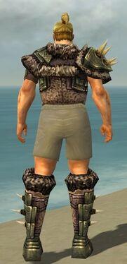 Warrior Elite Charr Hide Armor M gray chest feet back