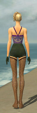 Mesmer Courtly Armor F gray arms legs back