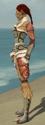 File:Ranger Canthan Armor F gray side.jpg