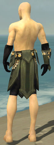 File:Ritualist Elite Kurzick Armor M gray arms legs back.jpg