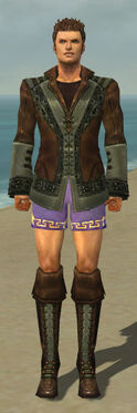 Mesmer Istani Armor M gray chest feet front