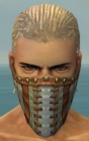 File:Ranger Luxon Armor M gray head front.jpg