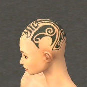File:Monk Norn Armor F gray head side.jpg