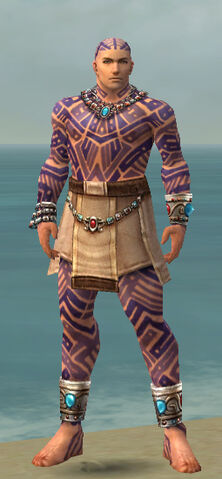 File:Monk Labyrinthine Armor M dyed front.jpg