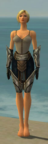 File:Warrior Sunspear Armor F gray arms legs front.jpg