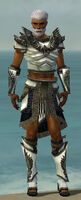 Paragon Obsidian Armor M gray front