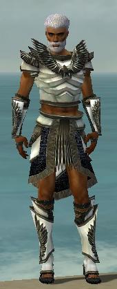 File:Paragon Obsidian Armor M gray front.jpg