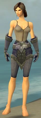 File:Warrior Platemail Armor F gray arms legs front.jpg