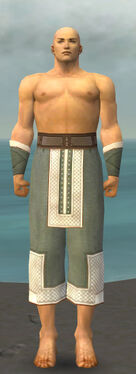 Monk Krytan Armor M gray arms legs front