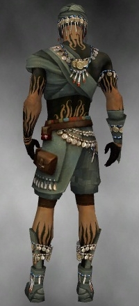 File:Ritualist Luxon Armor M gray back.jpg