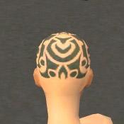 File:Monk Elite Kurzick Armor F gray head back.jpg